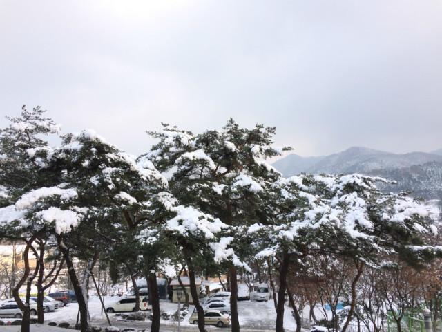 201412월_병원풍경_눈 (29).JPG